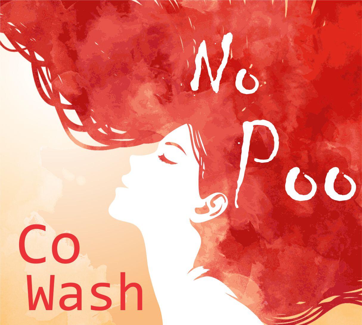 No Poo – Metodo de Não Utilizar Shampoo